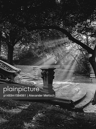 Friedhof Ohlsdorf an einem sonnigen Herbsttag, Hamburg - p1493m1584561 von Alexander Mertsch