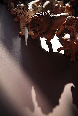Potsdam, Spielzeugtiere (Loewen und Tiger) stehen auf einem Tisch - p627m1035271 von Hendrik Rauch
