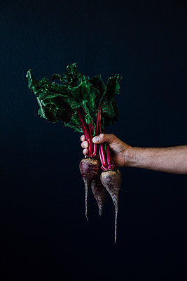 Man Holding Beets - p1262m1119982 by Maryanne Gobble