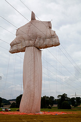 Covered power pylon - p993m877364 by Sara Foerster