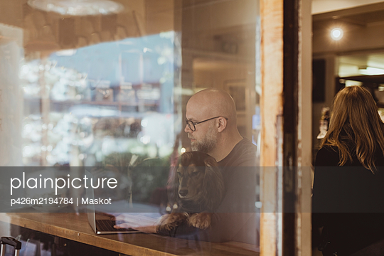 Bald man sitting with dog while using laptop seen through cafe window - p426m2194784 by Maskot