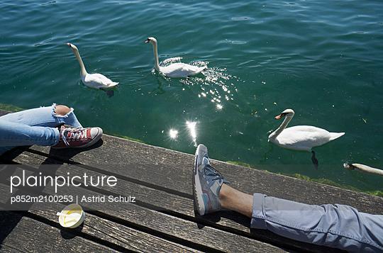 Entspannung mit Schwänen - p852m2100253 von Astrid Schulz