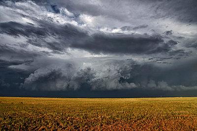 p429m926228 von Jason Persoff Stormdoctor