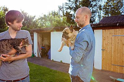 Hund und Katze lernen sich kennen - p432m1445248 von mia takahara