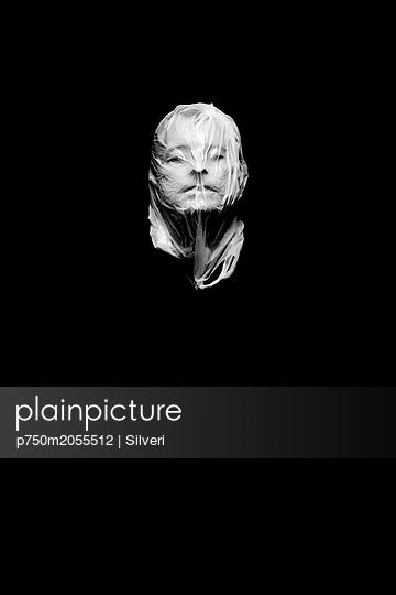 p750m2055512 by Silveri
