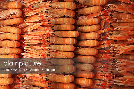 Shrimps - p1016m2142763 by Jochen Knobloch