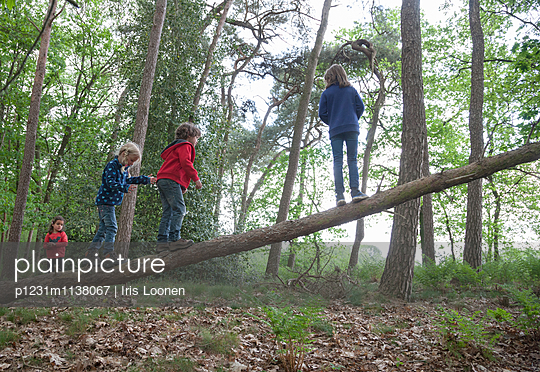 Children climbing on dead tree - p1231m1138067 by Iris Loonen