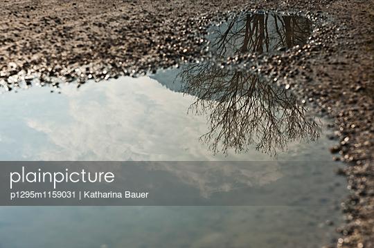 Spiegelung - p1295m1159031 von Katharina Bauer