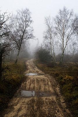 Hügeliger Pfad - p1020m777473 von Aaron Alexandersson