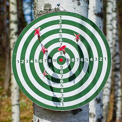 Darts on dart board in the woods - p4266820f by Tuomas Marttila