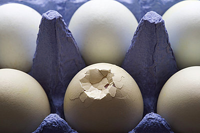 Smashed egg with other eggs in carton - p9247798f by Image Source