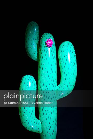Kaktus als Geschenk - p1149m2021584 von Yvonne Röder
