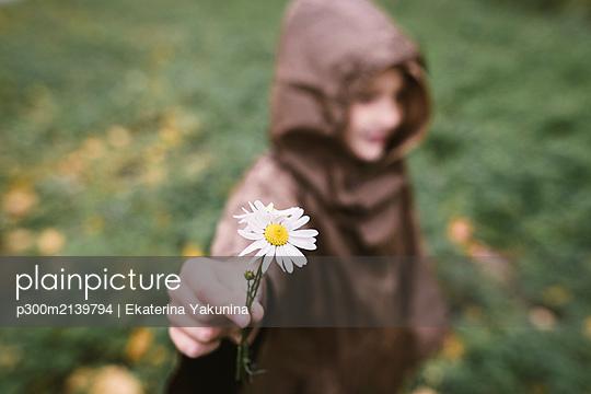 Boy presenting Chamomile, close-up - p300m2139794 by Ekaterina Yakunina