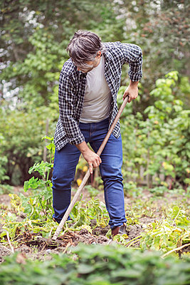 Mid adult man raking vegetable garden - p426m1003607f by Maskot