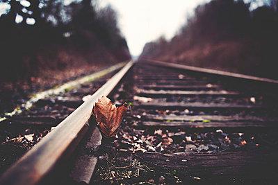 Schienen - p1002m740715 von christian plochacki