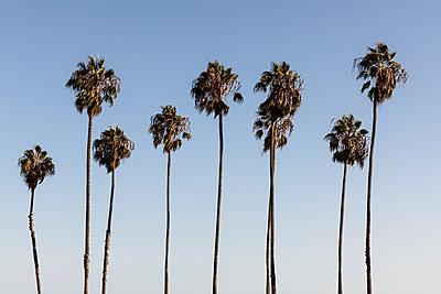 Santa Barbara - p1094m971513 by Patrick Strattner