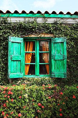 Grün bewachsene Hauswand - p045m907323 von Jasmin Sander