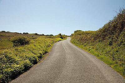 Rural road, Cornwall, England, United Kingdom - p924m744541f by Janeycakes Photos