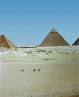 3 camels, Giza, Egypt - p1028m2044278 by Jean Marmeisse