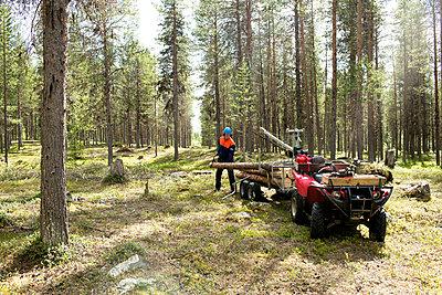 p312m1495419 von Fredrik Ludvigsson