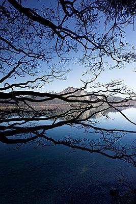 Walchensee - p743m779044 by Stefan Freund