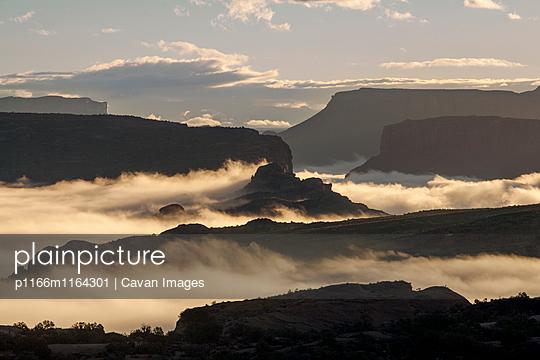 p1166m1164301 von Cavan Images