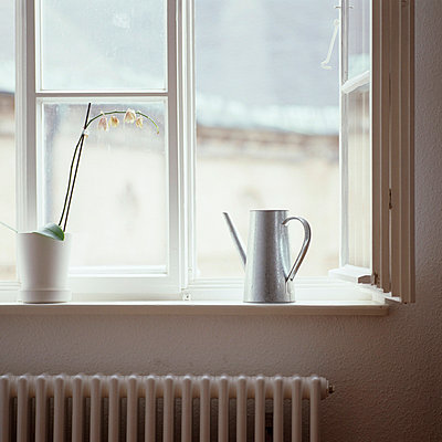 Window - p4220552 by Büro Monaco