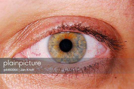 p4460064 von Jan Knoff