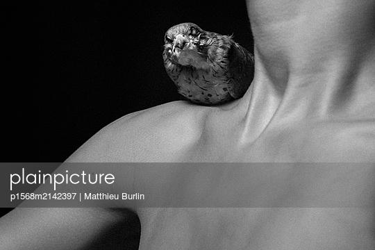 Vogelfrau - p1568m2142397 von Matthieu Burlin