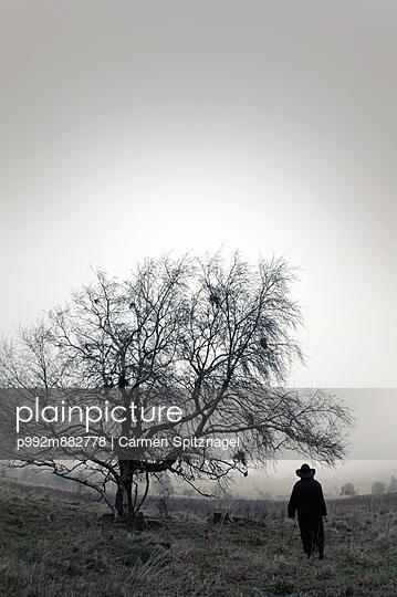 Spaziergang im Nebel - p992m882778 von Carmen Spitznagel