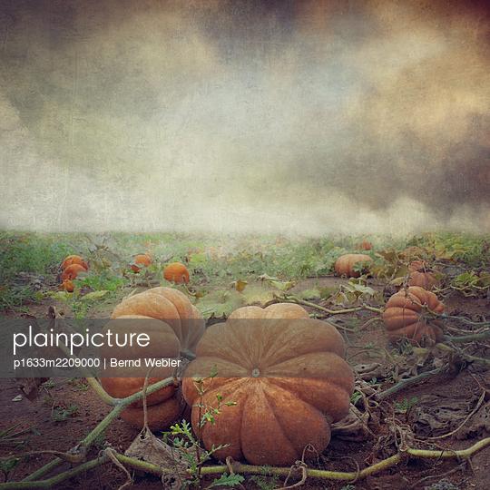 Suddenly Autumn - p1633m2209000 by Bernd Webler