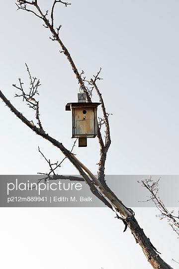Vogelhäuschen - p212m889941 von Edith M. Balk