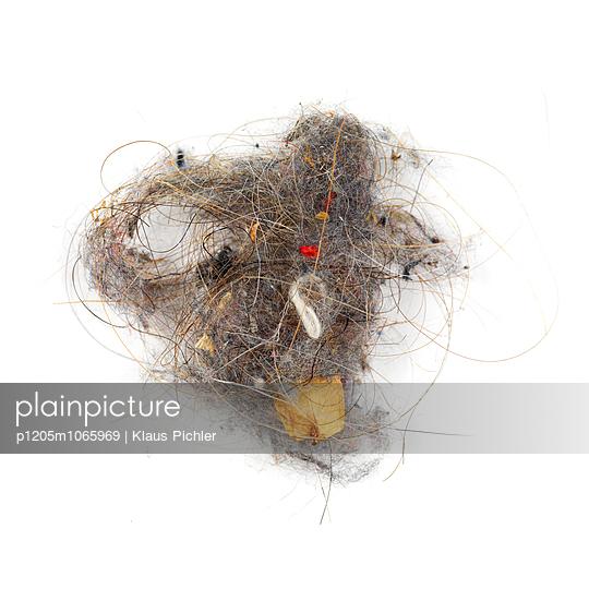 Haïr - p1205m1065969 by Klaus Pichler