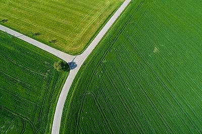 Germany, Bavaria, Aerial view of country roads cutting through green countryside fields in spring - p300m2156622 by Martin Rügner