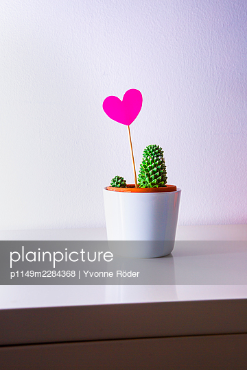 Cactus and heart - p1149m2284368 by Yvonne Röder
