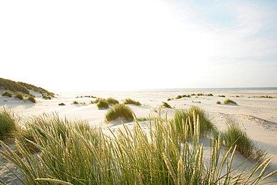 Holländische Küste - p5670706 von ofoulon