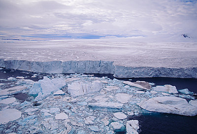 Iceberg floating on water - p5752003f by Magnus Elander