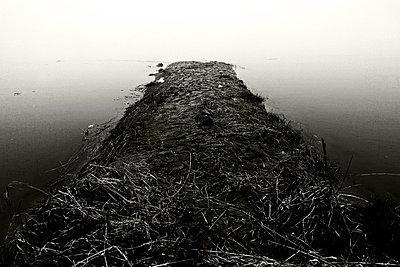 Oderbruch bei Kuestrin-Kietz - p9792897 von Zickert