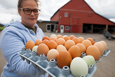 Female farmer holding full egg carton outdoors, Chilliwack, British Columbia, Canada - p343m1543728 by Christopher Kimmel