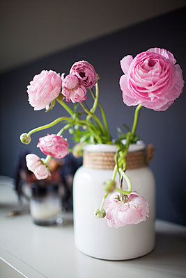Close-up of pink roses in vase on table - p1166m1150683 by Cavan Images