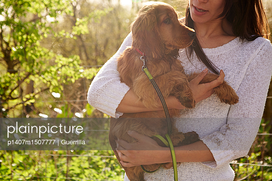 Cocker Spaniel Owner Holding Dog On Outdoor Walk - p1407m1507777 by Guerrilla