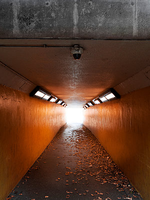Underground subway with autumn leaves - p1280m2245418 by Dave Wall