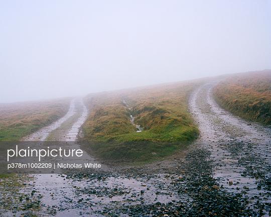 Muddy tracks into mist - p378m1002209 by Nicholas White