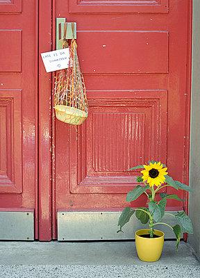 Nette Nachbarschaft - p6060197 von Iris Friedrich