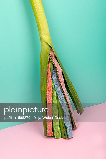 Lauchstange mit Gummischlangen - p451m1589270 von Anja Weber Decker