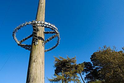 Pole Guard - p1562m2206338 by chinch gryniewicz