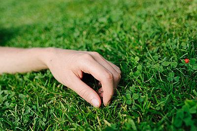 Female hand placed on lawn - p586m1066286 by Kniel Synnatzschke