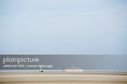 Strandsegler auf Römö - p992m2217630 von Carmen Spitznagel