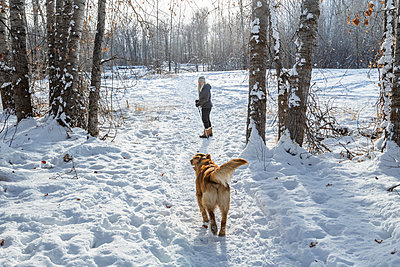 Senior woman walking with dog through snow - p1427m2169229 by Steve Smith