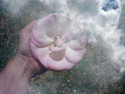 Romantisch - p945m1589614 von aurelia frey